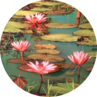 Fabulloso Leaf Designs Pink Lotus Quarter Printed Ceramic Plate (Multicolor, Pack Of 1)