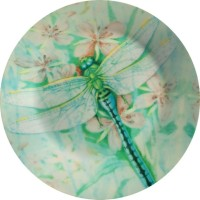 Fabulloso Leaf Designs Green Dragonfly Dinner Printed Ceramic Plate (Multicolor, Pack Of 1)