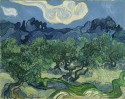 The Olive Trees By Vincent Van Gogh Fine Art Print - Medium