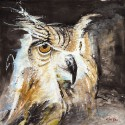 The Night Owl Canvas - Large