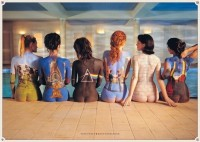 Pink Floyd - Back Catalogue Paper Print: Poster