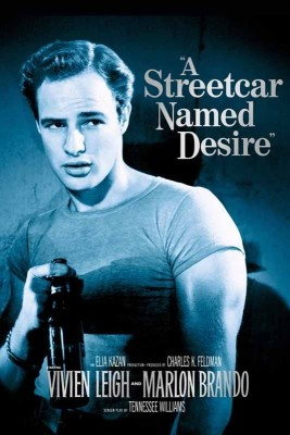 Streetcar Named Desire Essay On