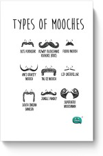 PosterGuy Posters Being Indian Types Of Mooches Info Graphic Illustration Paper Print
