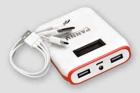 Pannu-PRW12-12000mAh-Power-Bank