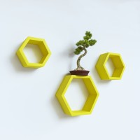 wallz-art-hexagon-shape-mdf-wall-shelf