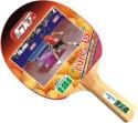 GKI Kung-Fu Table Tennis Racquet