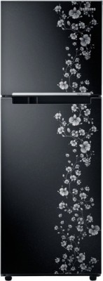 Samsung RT27JARMABX/TL 253 L Double Door  Refrigerator available at Flipkart for Rs.20674