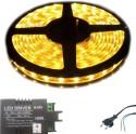 Iplay Yellow Rice Lights - Pack Of 1