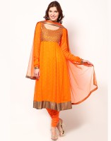 Magnetic Designs Self Design Anarkali Suit