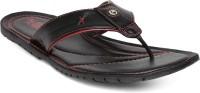 Alberto Torresi Men Women Sandals