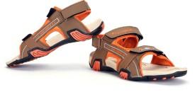 Elligator Men Sandals