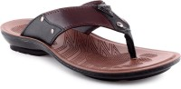 Welcome Welcome Pure WGP 3554 Brown Floater Sandals Men Sandals