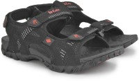 Lee Cooper Men Black, Red Sports Sandals Black, Red