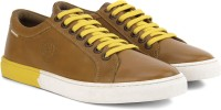 U.S. Polo Assn. Sneakers Tan, Yellow