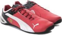 Puma Future Cat M2 Sf Jr Sports Shoes: Shoe