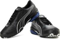 Puma Tazon II DP Sneakers