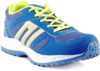 Dox Blue Walking Shoes