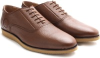 U.S. Polo Assn. Sneakers Brown