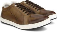 Knotty Derby Carrow Punched Sneaker Sneaker Black, Brown, White