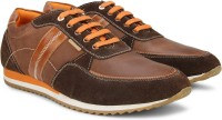 U.S. Polo Assn. Sneakers Brown, Orange