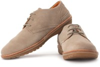 Timberland Earthkeeper Front Country Travel Corporate Casuals: Shoe