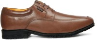 Red Chief V.T.B.D Brown Lace Up Shoes