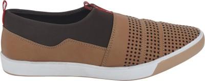 Zodi Casual Shoes