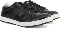 Knotty Derby Carrow Punched Sneaker Sneaker Black, White