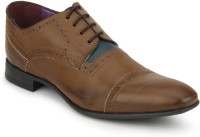 Knotty Derby Tan And Blue Viktor TC Brogue Corporate Casuals