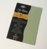Canson Mi-Teintes A4 Colour Sheets 160gsm - Light Green 480 Sketch Pad (Light Green, 5 Sheets)