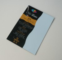 Canson Mi-Teintes A4 Colour Sheets 160gsm - Azure 102 Sketch Pad (Azure, 5 Sheets)