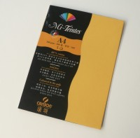 Canson Mi-Teintes A4 Colour Sheets 160gsm - Canary 400 Sketch Pad (Canary, 5 Sheets)