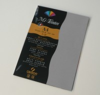 Canson Mi-Teintes A4 Colour Sheets 160gsm - Flannel Grey 122 Sketch Pad (Flannel Grey, 5 Sheets)