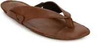 ESTD. 1977 1239 - Tan Flip Flops: Slipper Flip Flop