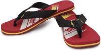 Puma Slippers: Slipper Flip Flop