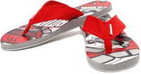 Compare Go Bahamas Flip Flops at Compare Hatke