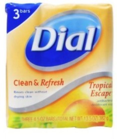 Dial Tropical Escape Antibacterial Deoderant Soap Bar 3 Count (Pack of 3)
