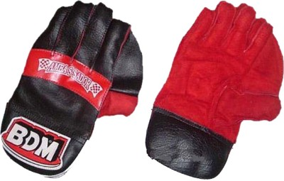 BDM Ambassador Wicket Keeping Gloves (Men, Black, Red)