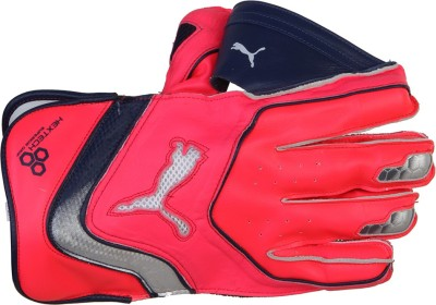 Puma evoSpeed 1 SE Wicket Keeping Gloves (Men, Red)