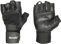 Aerofit 02-2035L Gym & Fitness Gloves (L, Black)