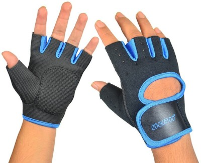 Cockatoo Pro Training Gym & Fitness Gloves (L, Black, Blue)