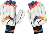 Puma Evospeed Batting Gloves (Men, White, Blue)