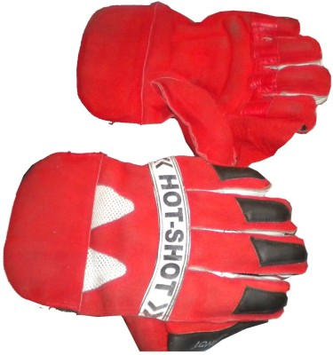 elion fitness kp1 Wicket Keeping Gloves (Free Size, Red)