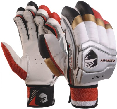 Osprey C 1000 Batting Gloves (Men, Multicolor)