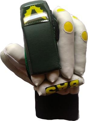 BAS Vampire Elite Batting Gloves (Men, White, Green)