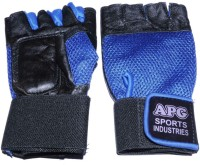 APG Net Blue Gym & Fitness Gloves (L, Black, Blue)