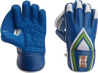 BDM Dynamic Super Wicket Keeping Gloves (Men, Multicolor)