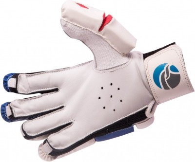 FLX Cestus Classic B1 Batting Gloves (Men, White, Blue)