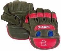 APG Practice Wicket Keeping Gloves (Men, Multicolor)