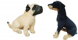 Cuddles Cute Looking Pug Dog With Rottweiler Combo - 8 inch